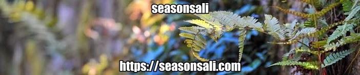 seasonsali.
