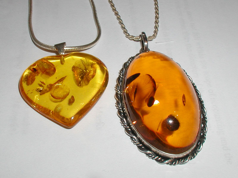 Know : Amber – Fossil Beauty